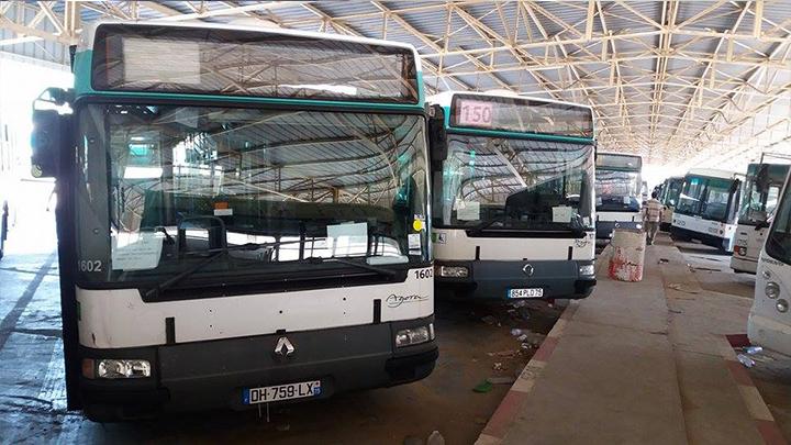 Achat de 12 bus